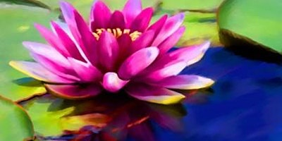 The Center for Healthy Living:  Integrative Medicine Services