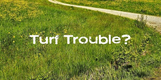 Turf Trouble? A comprehensive strategy for growing a healthy lawn