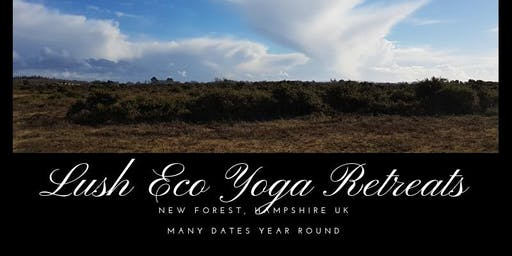 Eco Farmstay in the New Forest 13-15 December 2019