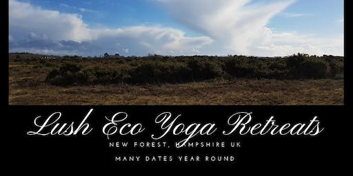 Eco Farmstay in the New Forest February 7-9 2020