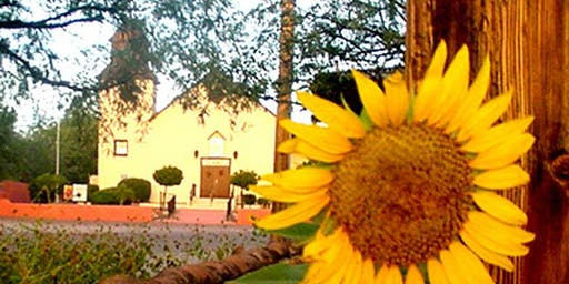Tubac's Village-Wide Van Gogh Sunflower Paintout & Auction Fun-Raiser