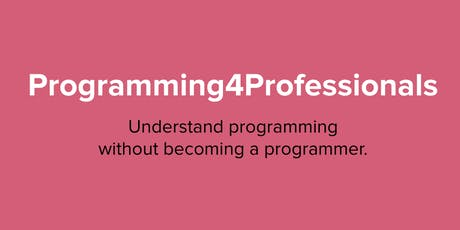 Programming4Professionals: Foundations 1 & 2 tickets