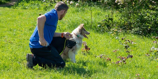 Introduction to K9 Tracking 101