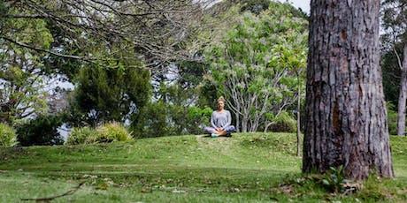 Intro to Meditation Workshop tickets