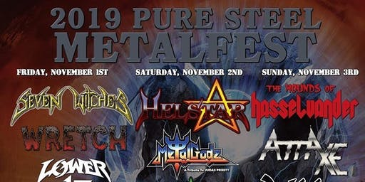 Pure Steel Metalfest 2019
