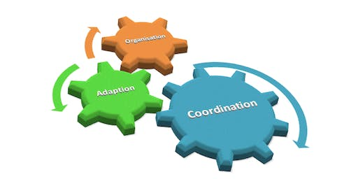 Coordinator Support Group session - Tuesday 3 September 2019