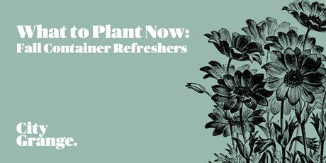 What to Plant Now: Fall Container Refreshers tickets