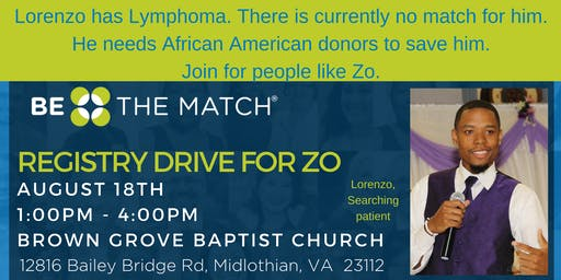 Registry Drive for Coach Zo