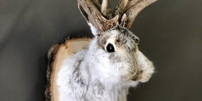 Atlas Obscura Society Los Angeles: Jackalope Shoulder Mount Taxidermy Workshop