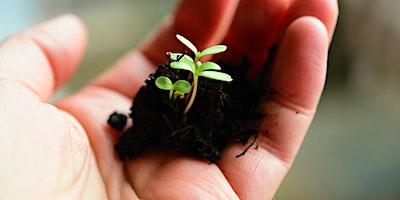 Seed Library: Seed swap & seed raising talk