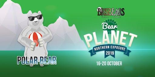 Polar Bear - Pool Party