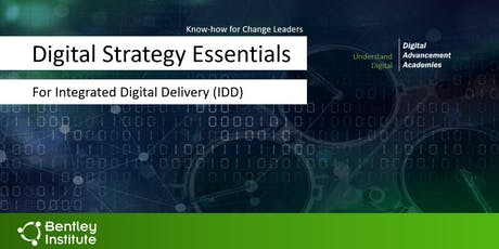 Digital Strategy Essentials for Integrated Digital Delivery (IDD) tickets