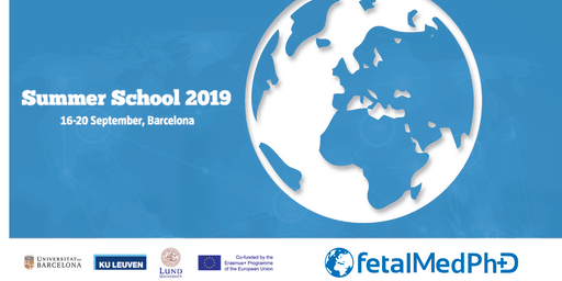 Transfer of Knowledge - EM FetalMed-PhD Summer School 2019