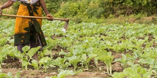 Training Course on Establishing and Strengthening Farmer Organizations
