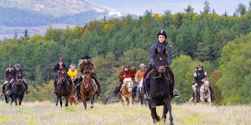 Horse riding and fitness holiday