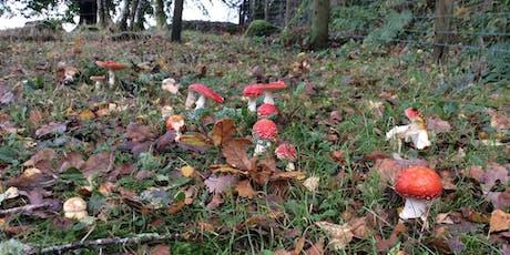 Fungus Foray tickets