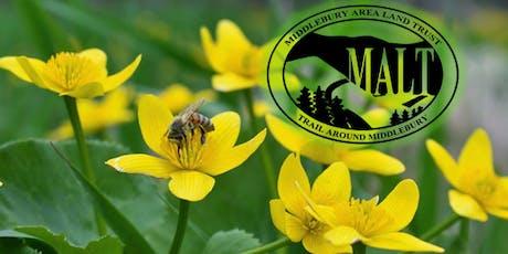 Nov - Nature-based homeschool at MALT - ages 6-8 tickets