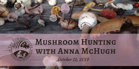 Mushroom Hunting with Anna McHugh - Afternoon Session tickets
