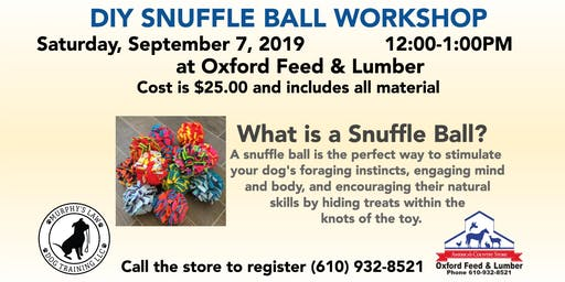 DIY Snuffle Ball Workshop