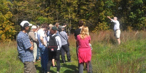 Forest Ecology Walk - Hudson Valley Ramble