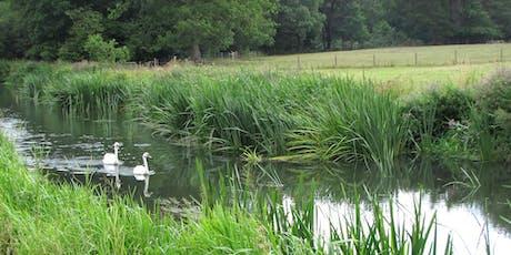 Rivers Week - Riverside Bird Walk tickets