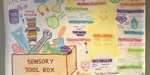 Understanding Sensory Processing