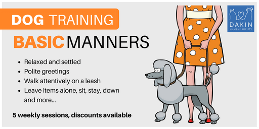 Basic Manners Dog Training -Leverett