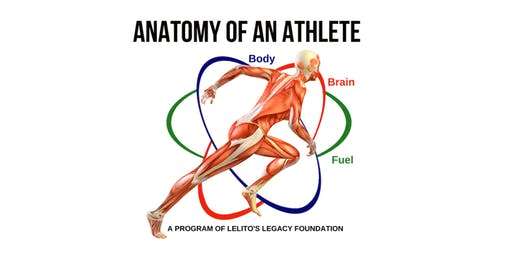 Anatomy of an Athlete: The Brain