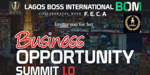 Business Opportunity Summit 1.0