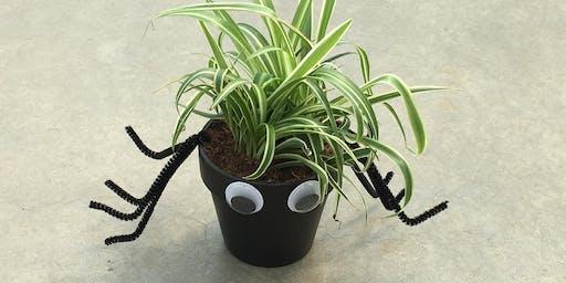 Kids Workshop: Spooky Spider Plants 10/12/19 @10am