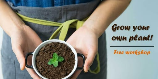 Grow your own plant! Free workshop for kids