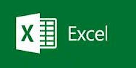 Microsoft Excel - Basics Training tickets