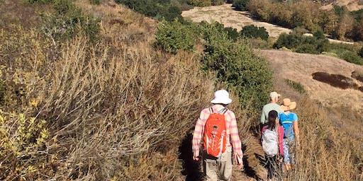 Discovery Hike