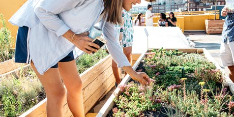 Larimer Uprooted Rooftop Farm Tour tickets