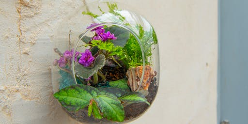 Create + Sip Terrarium Container Workshop