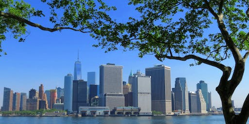 """NYC Wild! Essentials: New York Harbor: """"Late Night"""" Governor's Island Photography and Nature Walk"""
