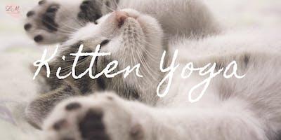 Kitten Yoga (September 15th)