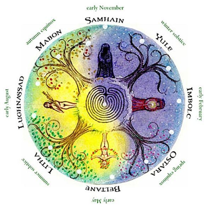 Medicine of the Wheel image