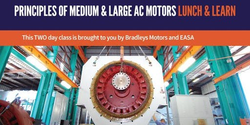 PRINCIPLES OF MEDIUM & LARGE AC MOTORS LUNCH AND LEARN