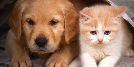 Pets and Essential Oils: Anxiety and Arthritis Management tickets
