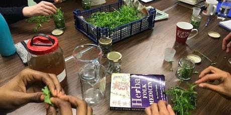 Folk Medicine Making tickets