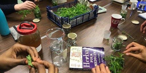 Folk Medicine Making