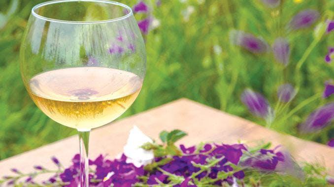 Wine & Design: Floral Basics Class