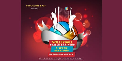 Volleyball Skills Sessions