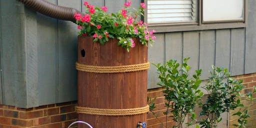 Rainwater Harvesting: Rain Barrels, Rain Gardens, and Cisterns