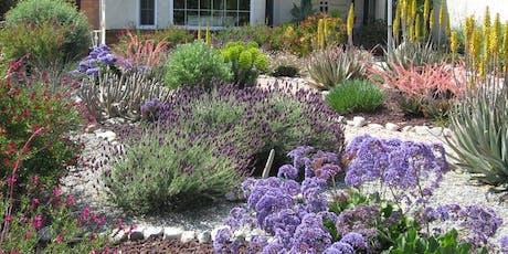 Design it Yourself Native Plant Landscape tickets