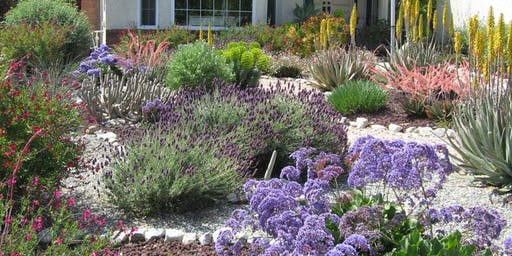 Design it Yourself Native Plant Landscape