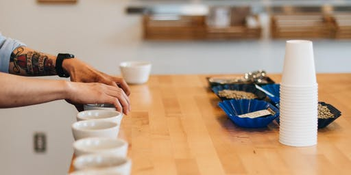 Cupping with Sedna Coffee & Yellow Rooster Coffee Imports