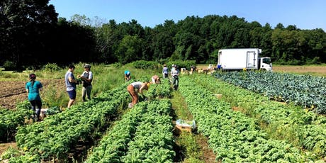 Boston Area Gleaners Service Workday tickets