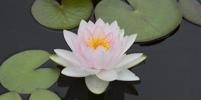 Inner Peace, Inner Power